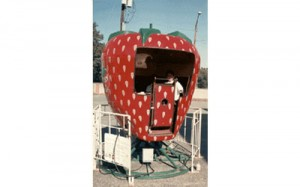 Berry-Go-Round | carnival rides for rent NJ