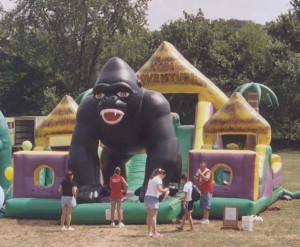 Kong Adventure | inflatable rental company DE