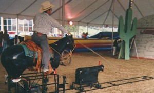Rodeo Roper | mechanical bull rental NJ
