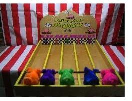Porkchop Speedway | Amusement Rentals for 2014