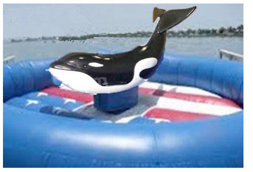 Mechanical-Killer-Whale